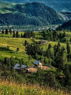 Bucovina, Romania (by Catalin Dumitrescu) Turism Romania, Visit Romania, Romania Travel, Scenery Photography, Beautiful Places, Beautiful Scenery, Green Landscape, Tourist Places, Color Of Life