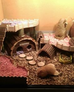 A cute,cool... Hamster house!