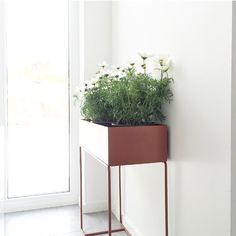 Elegant and timeless, this box on its delicate and thin legs in powder coated metal can be used for everything from plants to books or children's toys all around the house. You might even use it as a divider, to create small peaceful 'islands' or cosy corners in larger rooms. Shop it here: http://www.fermliving.com/webshop/search/news-living-aw15/plant-box-ochre.aspx