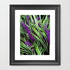Monkey Grass Framed Art Print by Cindy Munroe Photography - $33.00