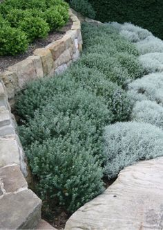 75 Awesome Front Yard Rock Garden Landscaping Ideas - HomeSpecially - Ruhiges P. 75 Awesome Front Yard Rock Garden Landscaping Ideas - HomeSpecially - Ruhiges P. Small Front Yard Landscaping, Country Landscaping, Backyard Landscaping, Landscaping Ideas, Small Front Yards, Sloped Front Yard, Front Yard Plants, Landscaping Edging, Landscaping Software