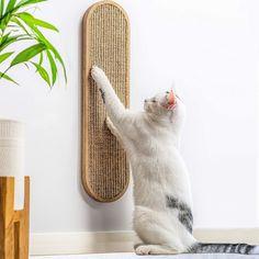 Cat Lover Gifts, Cat Gifts, Gifts For Cats, Best Cat Scratching Post, Cat Wall Furniture, Furniture Legs, Garden Furniture, Furniture Design, Modern Cat Furniture