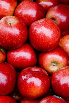 raw apples. fruit has natural sugars and fiber, cake does not. A good option, buy seasonal and during sales