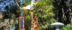 Disney: um guia para aproveitar o Animal Kingdom