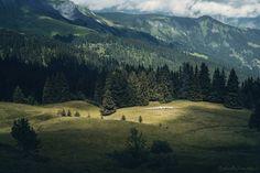 ksorra:    The Green Pass byRaphaelle Monvoisin