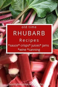 8 Great Ways to Use and Preserve Rhubarb - sauces, juices, pies. Fruit Recipes, Real Food Recipes, Dessert Recipes, Healthy Recipes, Vegetable Recipes, Vegetarian Recipes, Dinner Recipes, Ruhbarb Recipes, Applebees Recipes