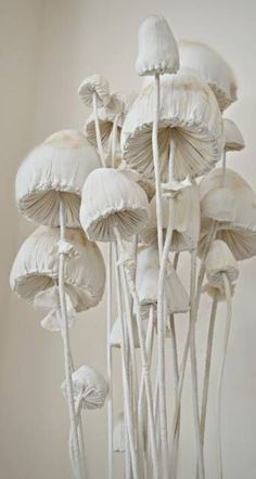 Textile ~ Toadstools : Upcycled Fairy Tale Objects : By Mister Finch from Leeds in Yorkshire sneak peak for a new summer show. Textile Sculpture, Art Textile, Textile Artists, Soft Sculpture, Mushroom Crafts, Mushroom Art, Art Origami, Mister Finch, Arts And Crafts