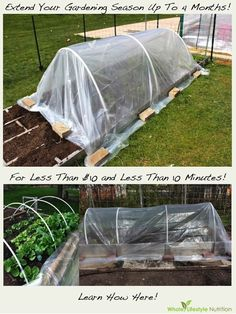 Extend Your Gardening Season Up To 4 Months Longer For Less Than $10   WholeLifestyleNutrition.com #gardening