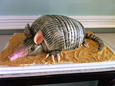 Armadillo groom's cake...and yes, it's red velvet
