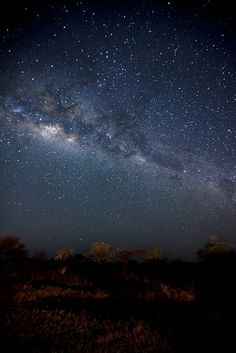 stars over Serengeti park, tanzania  THIS is what the Milky Way looks like under unpolluted skies...I've been to Africa and this IS what it looks like!!! Amazing.