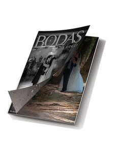 Revista Electronica , ebook
