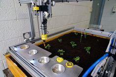 Extensão Universitária Curso de Extensão da FEAGRI desenvolve Robô
