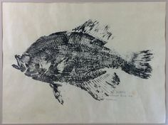 Gyotaku print of a Crappie from the Colorado by PrairieModernArts, $120.00