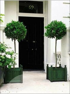 Topiaries flank a freshly painted front door, adding a welcoming look. (I've lost track of how many black doors we've painted)