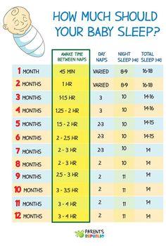 how much should your baby sleep infographic – Baby Care Tips Baby Schlafplan, Newborn Baby Tips, Baby Kind, Baby Trivia, Baby Sleep Schedule, Baby Feeding Schedule, Toddler Schedule, Baby Life Hacks, Baby Information