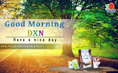 Welcome to the DXN Fans Blog: DXN NO 1!