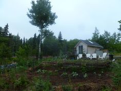 tiny house built from garden shed :)  September-2012-076