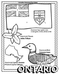 Canadian Province – Ontario coloring page Helpful … Flag Coloring Pages, Free Coloring, Easy Rider, Geography Of Canada, Province Du Canada, Canada 150, Canada Trip, Study History, Primary History