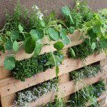 DIY Small Space Pallet Garden Life On The Bacony | Apartment Therapy