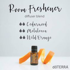 - Want to know all about cedarwood essential oil? Here is all there is to know about doTERRA cedarwood essential oil uses including DIY & diffuser blends. Cedarwood Essential Oil Uses, Melaleuca Essential Oil, Essential Oils For Pain, Essential Oil Diffuser Blends, Doterra Oils, Doterra Diffuser, Doterra Cedarwood, Wild Orange Essential Oil, Room Freshener