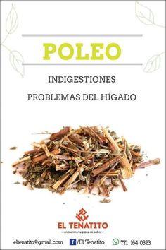 Plantas medicinales - Poleo