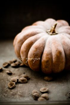 SEASONAL – AUTUMN – october has many benefits, and an abundance of pumpkins is just one of them.