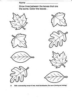 Autumn leaf matching