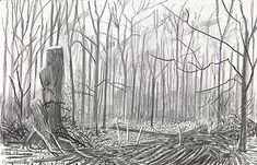 David Hockney - Untitled III, 2009 charcoal on paper, 26 x 40 in.