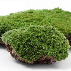 1 Sztuk DIY Fałszywe Moss Miniaturowe Ogród Ornament Rzemiosło Fairy Sztuczny…