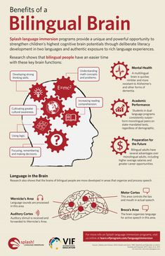Educational infographic & data visualisation The Bilingual Brain – good reasons to learn a second language!… Infographic Description The Bilingual Brain – good reasons to learn a second language! Learning A Second Language, Dual Language, Learn A New Language, Speech And Language, Spanish Language, Foreign Language, German Language, Japanese Language, English Language Learners