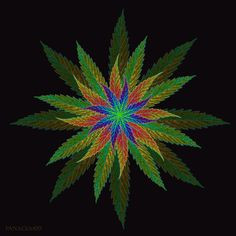 Trippy Marijuana Leaf | My Photoshop leaf art #art #photoshop #pot #psychedelic #weed # ...
