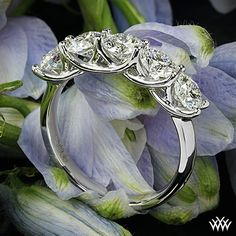 Glamorous Platinum 5 Stone Trellis Diamond Right Hand Ring Set with five dazzling ct G Expert Selection Diamonds. Beaded Prom Dress, Backless Prom Dresses, Maxi Dresses, Short Cocktail Dress, Cocktail Dresses, Ring Settings Only, Right Hand Rings, Anniversary Bands, Silver Rounds