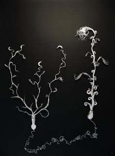 Deep Sea Fossil, 64 x 84 cm, in glass display, 2016 by  Iben Toft Nørgård