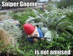 Gardener's Humor: Sniper gnome