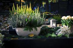 Dekorace na hrob může mít různou podobu. Inspirujte se a vyrobte si vlastní dušičkovou výzdobu. Plants, Plant, Planets