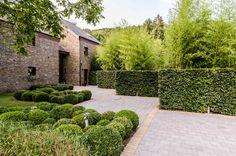 Entrée habitation, contraste haie taillée et bambous, massifs de buis taillés en boule, pierre bleue et terre cuite