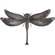 """Very Cool Stuff Dragonfly Wall Art, 25"""""""