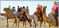 SAVE UP TO 30% ON Golden Triangle Tour BOOKING