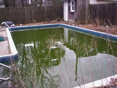 Home upgrade to avoid: pools and spas if they're not common for the area. Most buyers don't want to inherit the maintenance. Shorts Sale, Home Upgrades, Spas, Pools, Outdoor Decor, Home Decor, Decoration Home, Room Decor, Home Interior Design