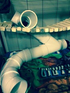 Fun Chinchilla tunnel (rat, guinea pig, degu) these are PVC pipes Diy Guinea Pig Cage, Guinea Pig House, Guinea Pigs, Cage Chinchilla, Cute Ferrets, Hamsters, Baby Skunks, Dumbo Rat, Rat Toys