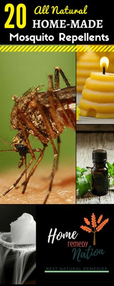20 Proven Home Remedies to Get Rid of Mosquitoes | Home Remedy Nation