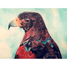 Acrylic painting of a hawk - a level