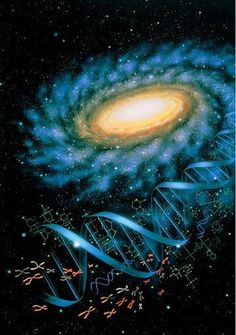 Bell's Theorem demonstrates that the Universe is fundamentally Interconnected, Interdependent, and Inseparable. ~ Fritjof Capra