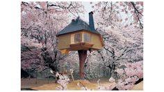 Una casa en el árbol, Hokuto (Japón).