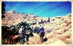 Palm desert hookup