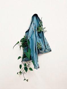 Denim jacket as planter.