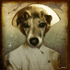 """Todd Conover- Nurse Nice, 2008, 30x30"""" photoshop and gold leaf on canvas"""