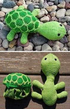 Free Knitting Pattern for Sheldon the Turtle Toy - This adorable turtle softie wears his removable shell like a sweater. Length: Approx. 9 inches. Designed by Ruth Homrighaus. Available in English, German, and French