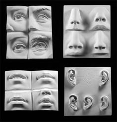 Human Facial Features Sculpting Reference Cast Set
