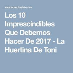 Los 10 Imprescindibles Que Debemos Hacer De 2017 - La Huertina De Toni